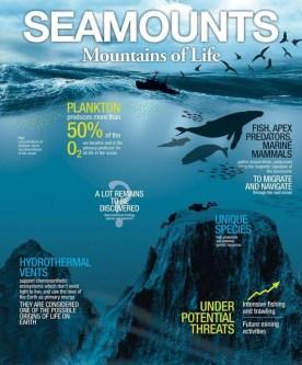 seamounts-icun