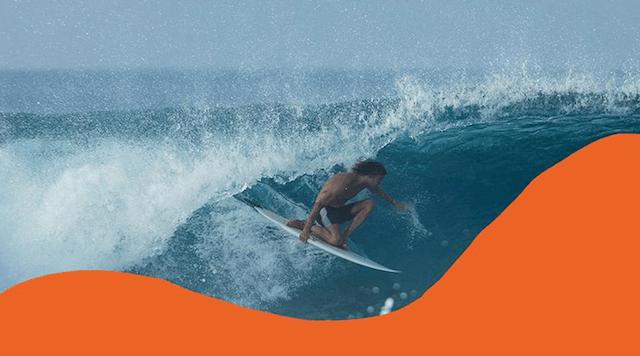 pilgrim surf supply ピルグリムサーフサプライ ボードショーツ