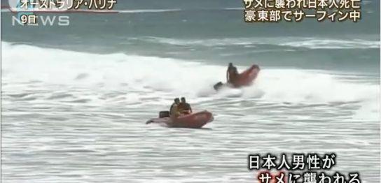 日本人男性オーストラリアでサメに襲われ死亡