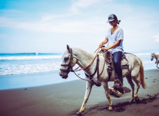 silvia horse style