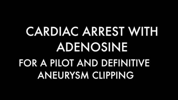 Cardiac arrest with adenosine