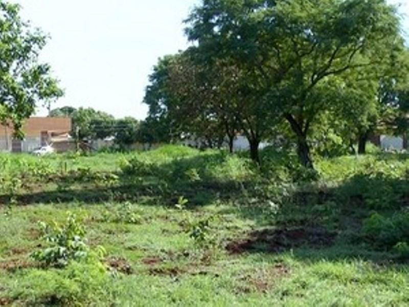 Polícia encontra dois corpos em fazenda de Lagoa da Confusão