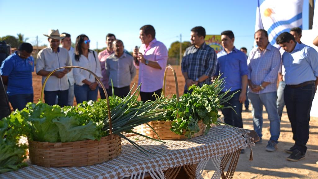 Horta Empreendedora é a maior de Palmas e atenderá 100 famílias