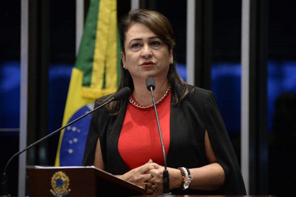 Senadora Kátia Abreu é convidada para curso sobre gestão pública nos EUA