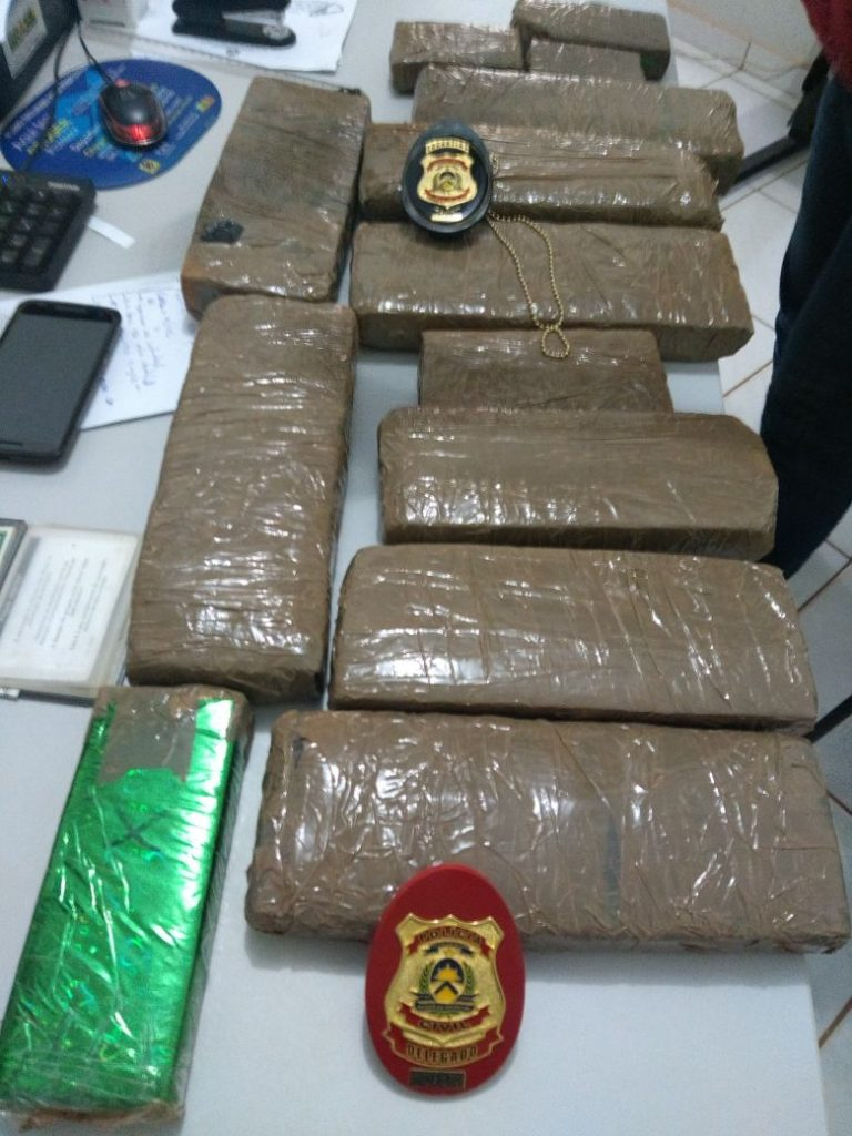 Polícia Civil apreende mais de 10kg de drogas e prende traficante no norte do Estado