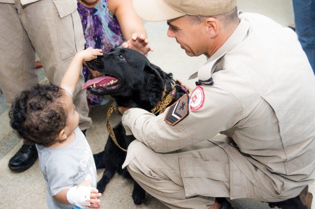 Bombeiros retomam atividades de Cinoterapia no Infantil Público de Palmas e busca novos animais para ampliar atendimento