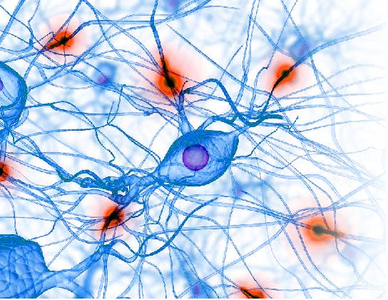 Ômega 3 pode ajudar na qualidade de vida das pessoas autistas