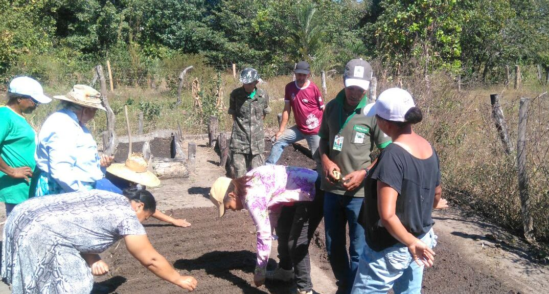 SENAR realiza Curso de Trabalhador na Olericultura no município de Peixe