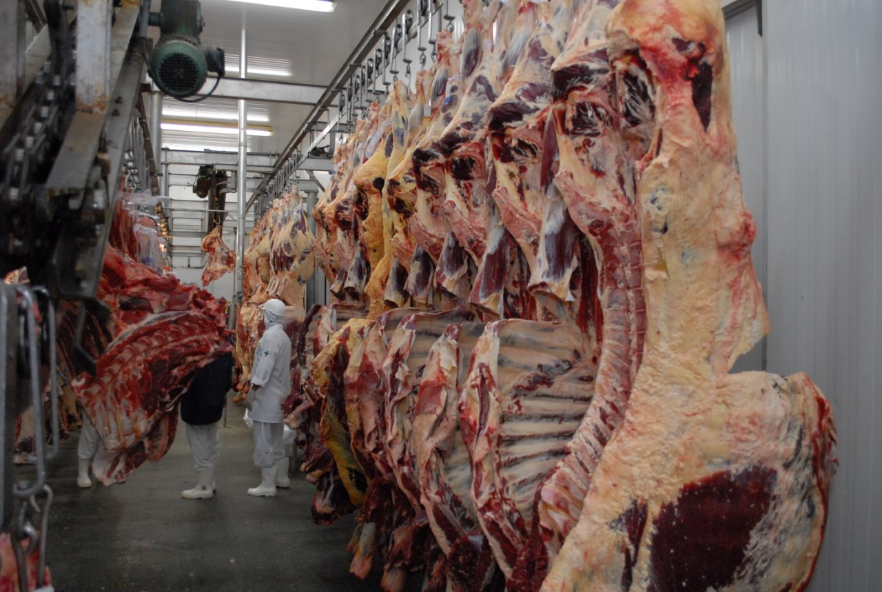 Tocantins conquista equivalência federal em inspeção de produtos de origem animal