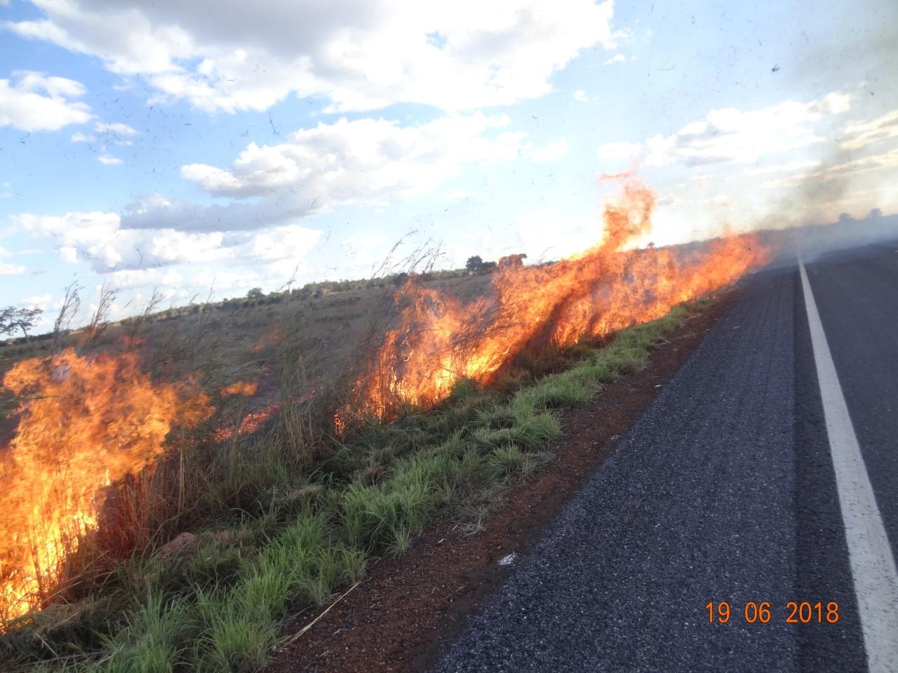 Monumento Natural das Árvores Fossilizadas realiza prevenção às queimadas
