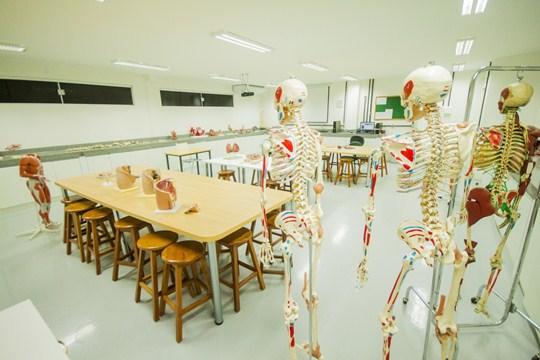 Centro de Inovação em Saúde e Educação prorroga inscrições de startups em Recife (PE)