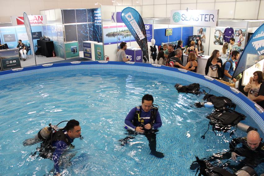 Padi Dive Festival terá experiência de mergulho gratuita para os visitantes