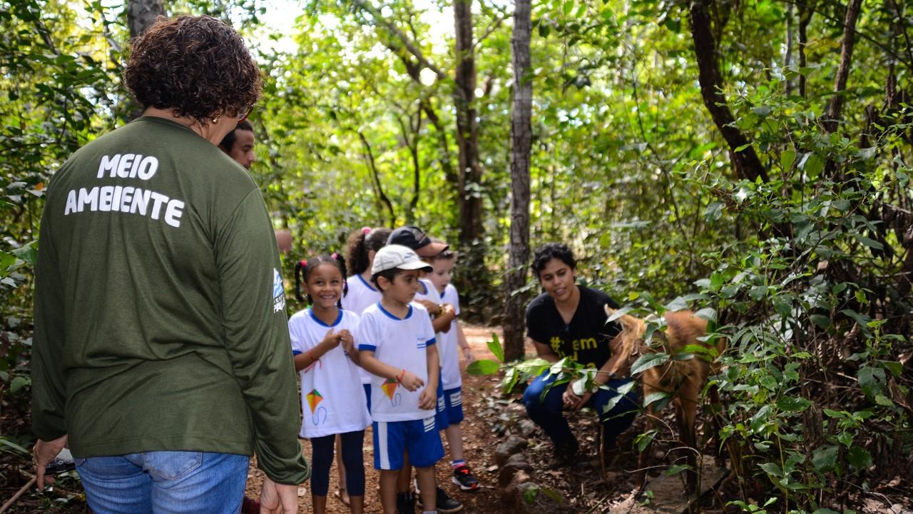 Alunos de Cmei da Capital conhecem animais e novas plantas em trilhas do cerrado