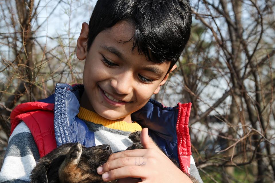 Cães podem auxiliar na prevenção de doenças do coração e até diminuir o risco de alergia nas crianças