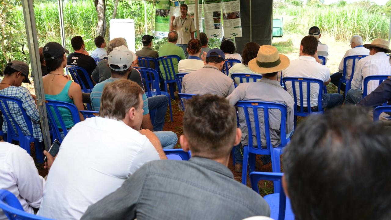 Dia de Campo ensina produtor de leite a superar a seca sem aumentar os custos da produção na Capital