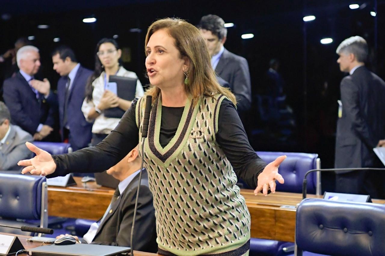 Kátia Abreu questiona ministro Paulo Guedes sobre alternativas para enfrentar crise econômica