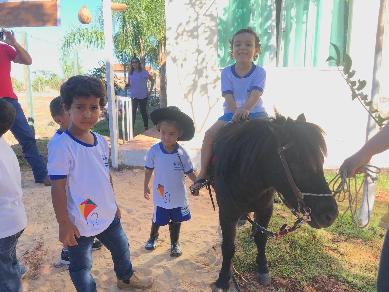 De pônei a vaquinha, Sítio dos Pequeninos recebeu mini visitantes nesta terça-feira,18