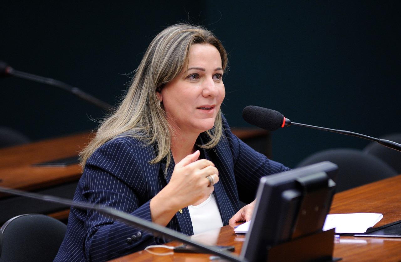 Reforma da Previdência: Dulce Miranda vota pela redução do tempo de contribuição de professores