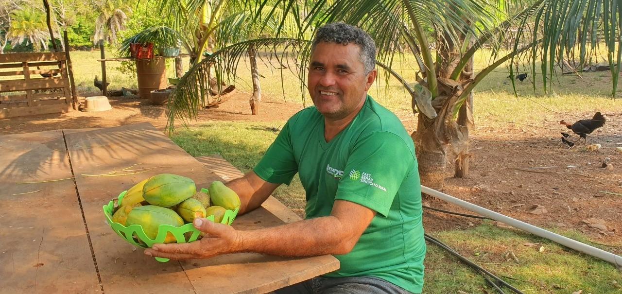 Cultivo de mamão tem ampliado renda de Produtor em Araguatins