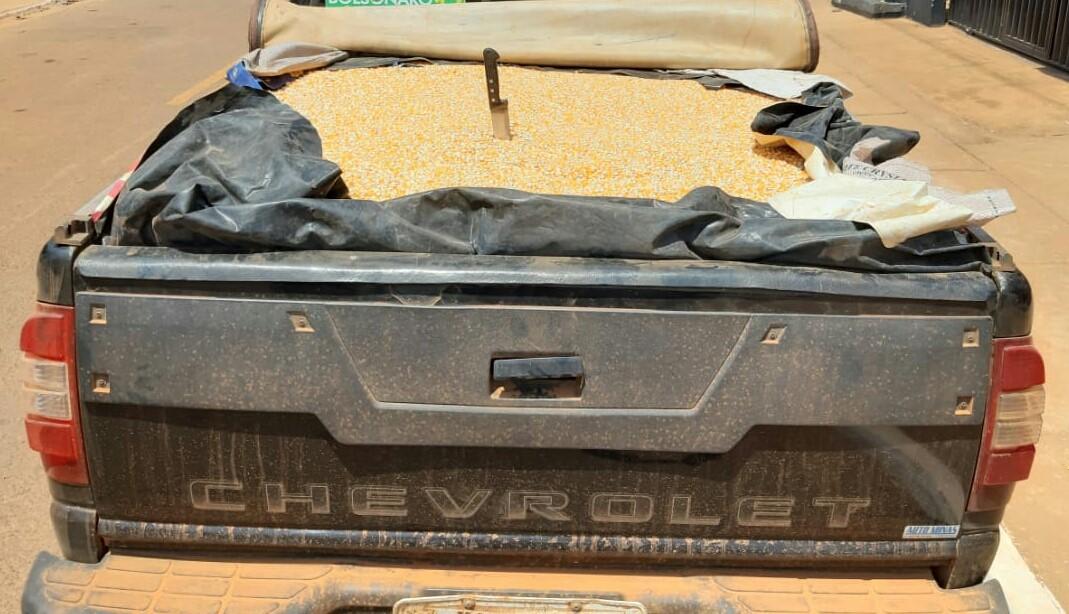 Polícia Militar prende homem por furto e recupera cargas de milho subtraídas de fazenda em Campos Lindos