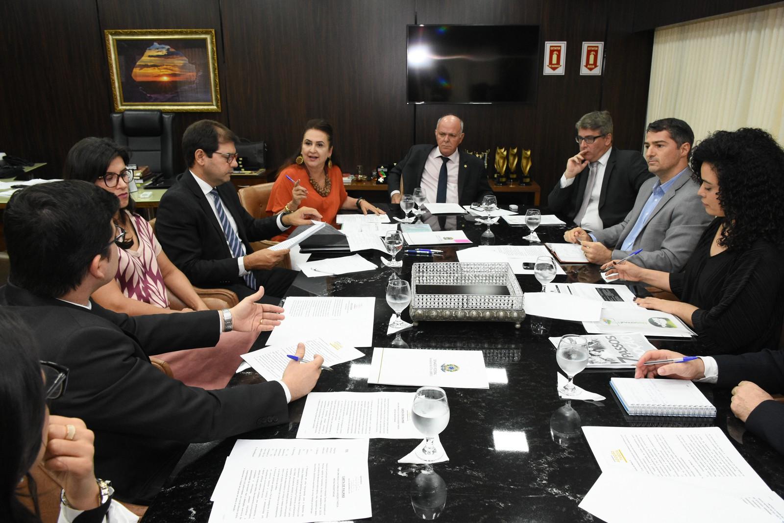 Ministério Público discute políticas de adoção tardia no Tocantins com representantes do Sistema de Justiça