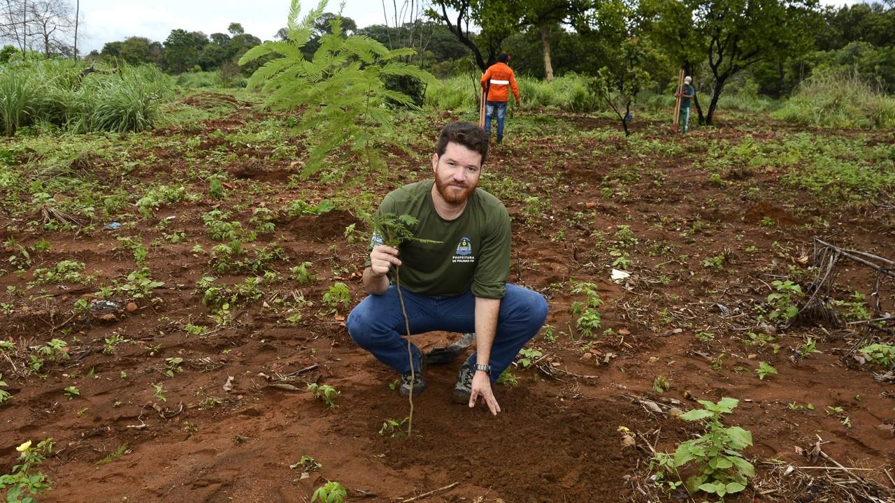 FMA e Ruraltins realizam plantio de cem mudas do cerrado no entorno do Córrego Sussuapara