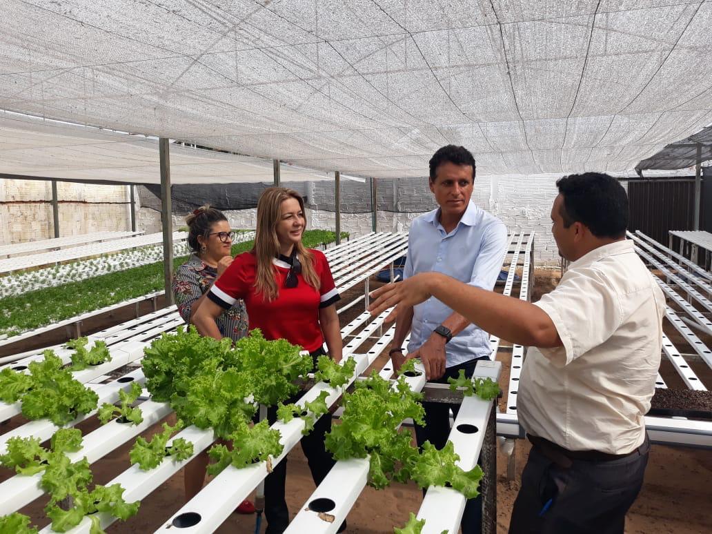 Associação Aliar publica edital para aquisição de equipamentos para projeto de horta hidropônica em Miracema