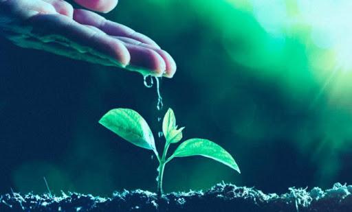 Pesquisa mostra retrato da agricultura digital brasileira