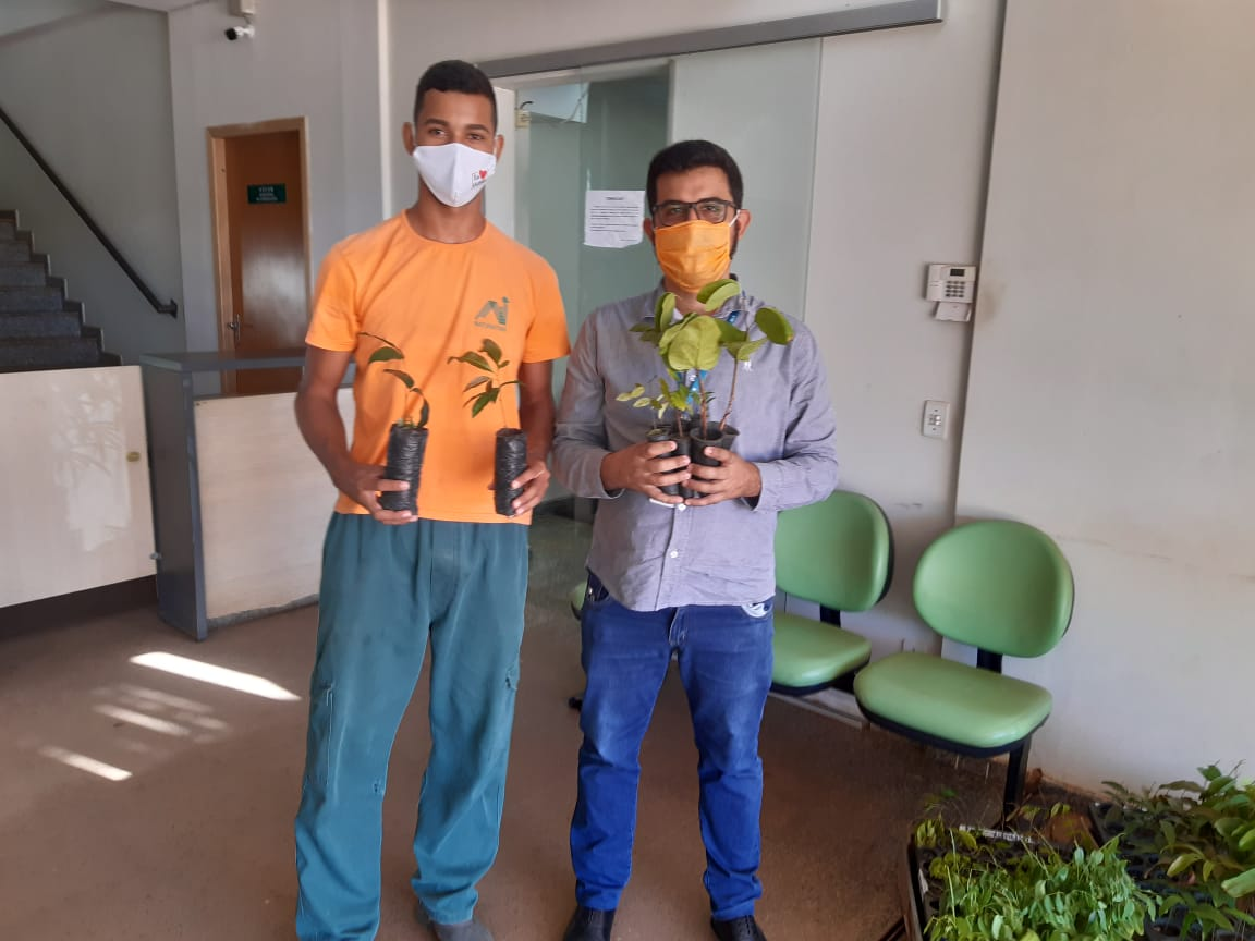 Brigadistas da APA Serra do Lajeado distribuem mudas no Dia Mundial do Meio Ambiente