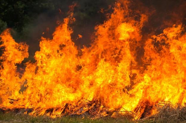 Energisa alerta sobre os riscos de queimadas próximas à rede elétrica