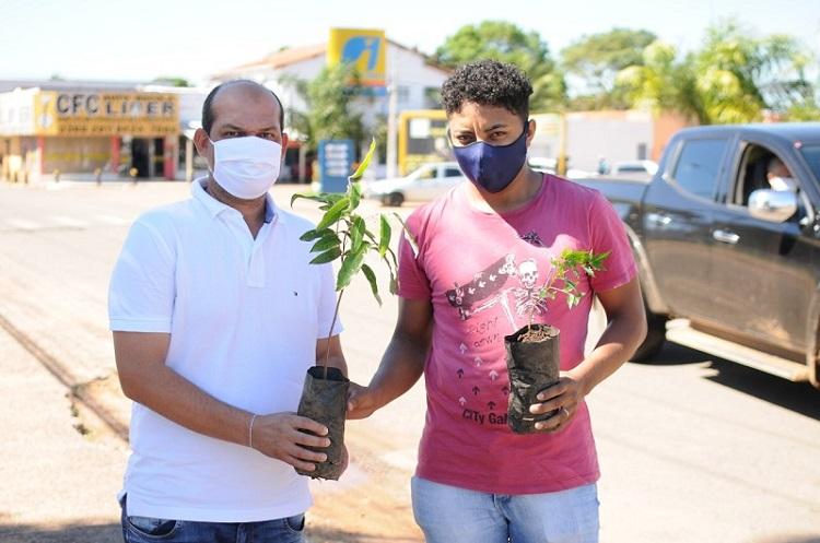 Prefeitura de Miracema doa mudas de árvores na Semana Nacional do Meio Ambiente