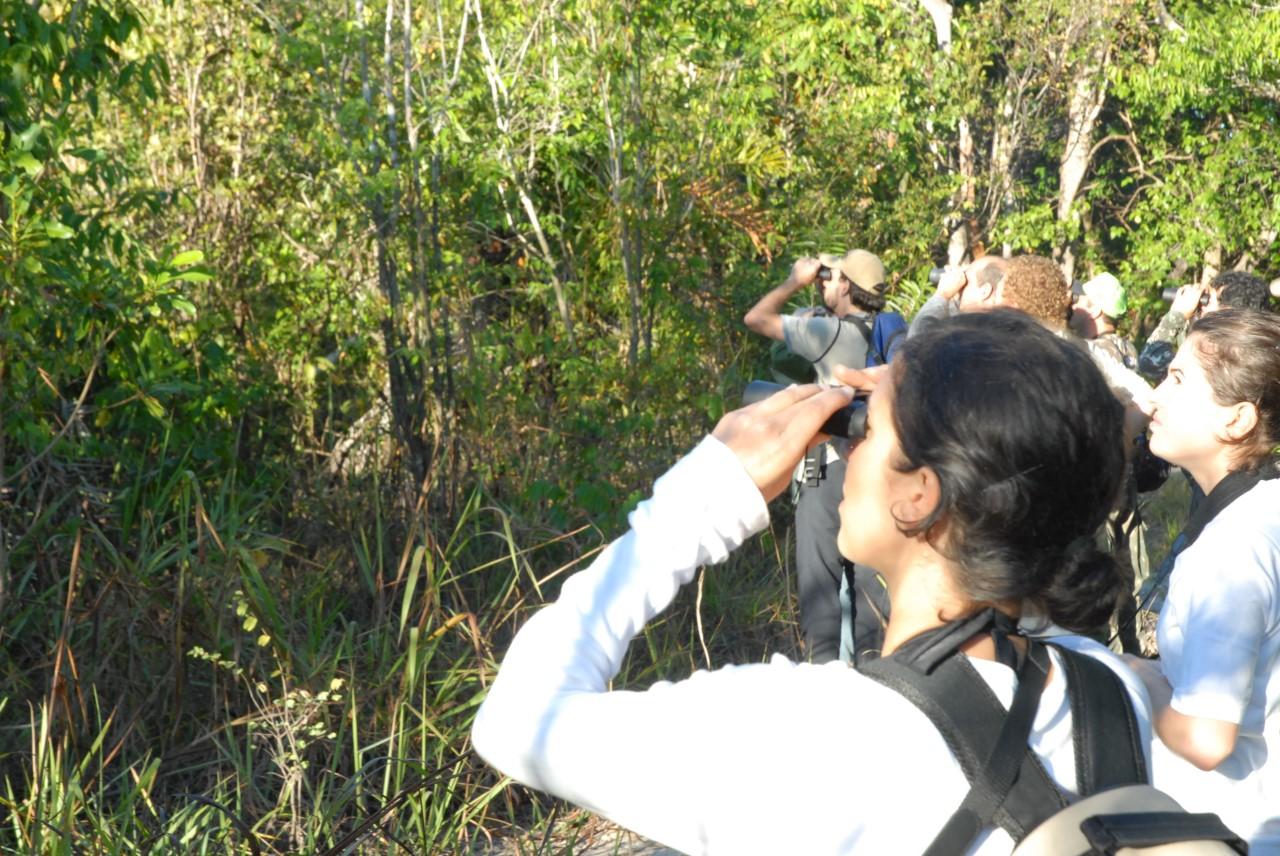Governo do Tocantins e UFT analisam abertura do Centro de Pesquisa Canguçu ao ecoturismo