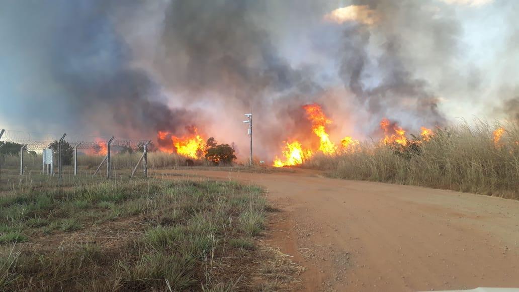Fogo destrói área de 10 campos de futebol próximo do Aeroporto de Palmas