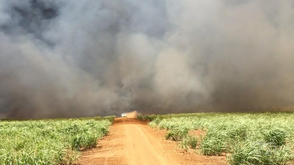 Propriedades que tiveram queimadas em anos anteriores serão monitoradas por satélite e donos começam a ser notificados
