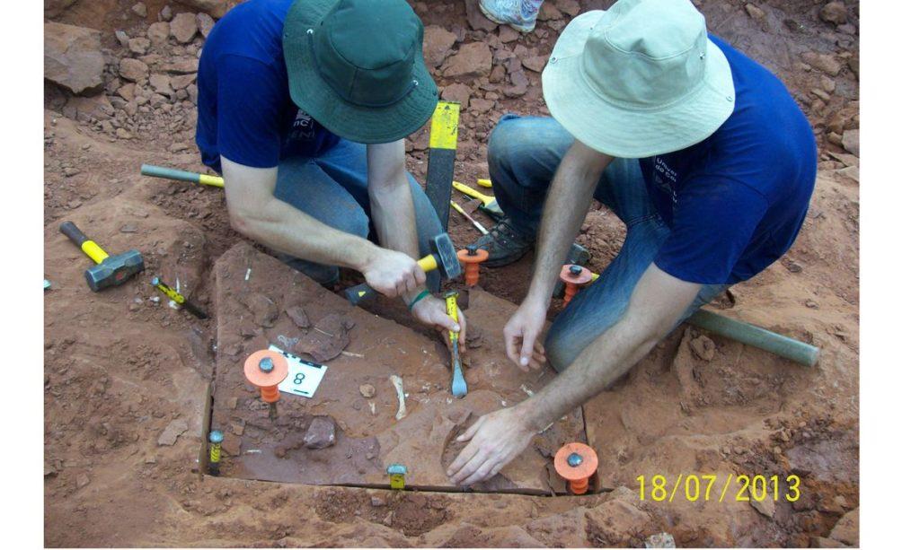 Pesquisadores do Museu Nacional no RJ apresentam dados inéditos sobre dinossauro brasileiro