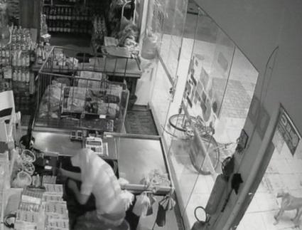 Homem furta mercado e cão vira 'cúmplice' do crime em Gurupi