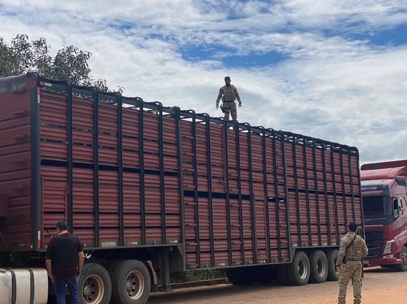No primeiro dia da Operação Horus, Polícia Civil realiza a abordagem de mais de 250 veículos