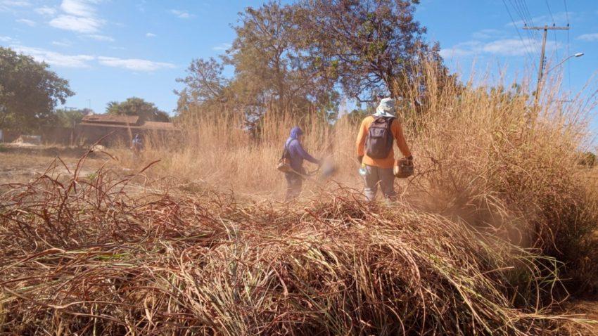 Prefeitura de Palmas atende população com serviços gerais de limpeza nesta quinta, 29