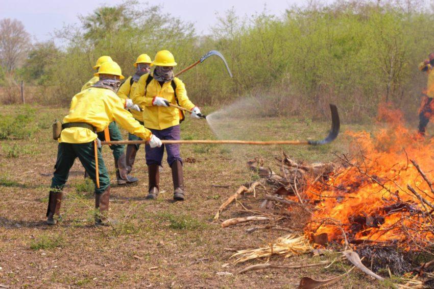 Senar lança curso de Brigadista proteção contra queimadas nas propriedades rurais
