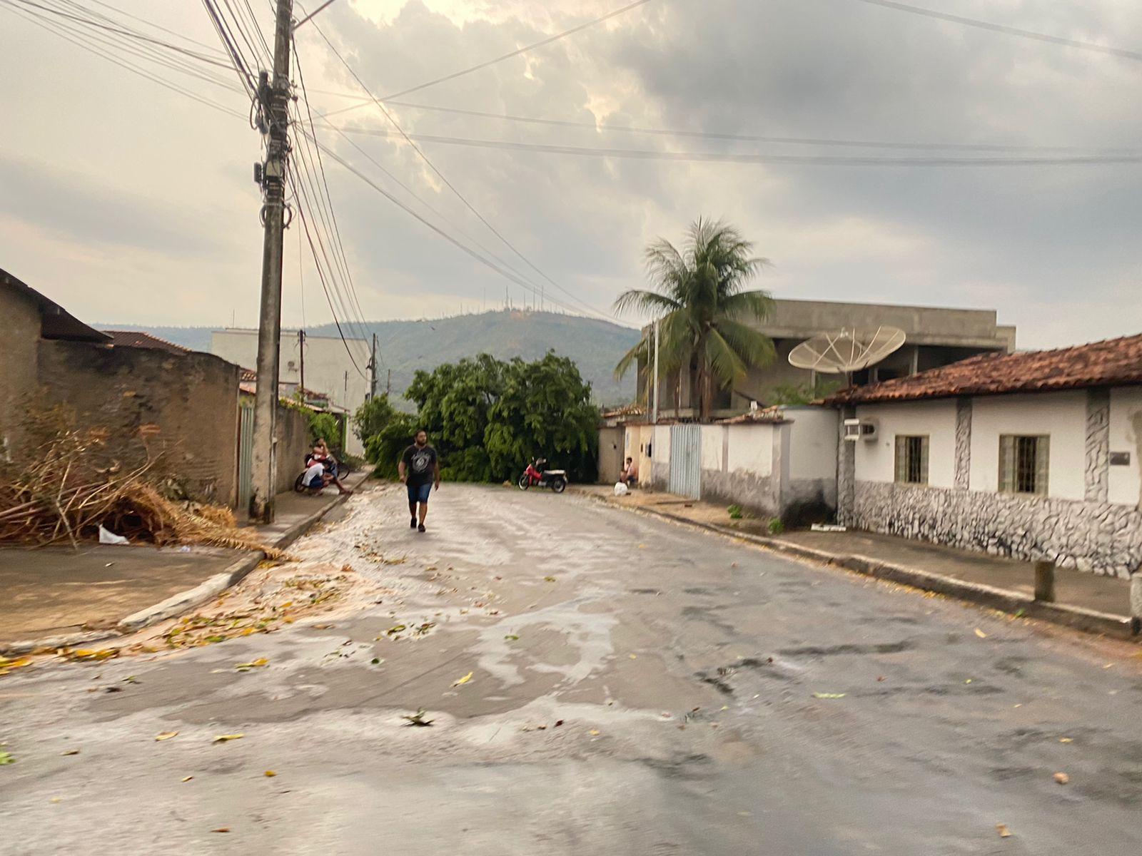 Chuva com ventania derruba árvores em Paraíso e na TO-080