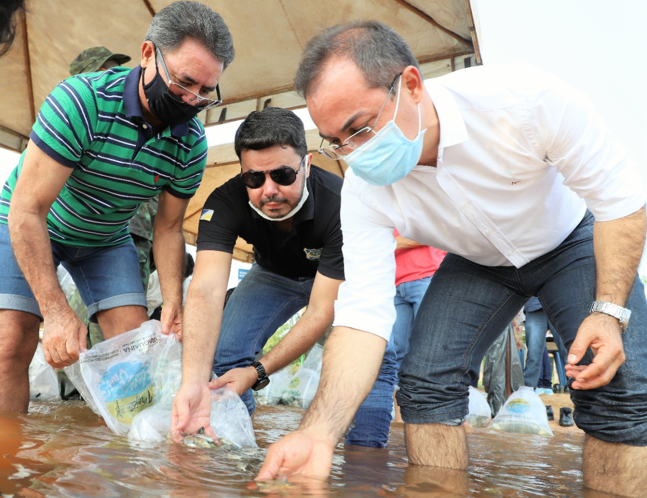 Recuperação do Lago Azul de Araguaína supera 40 mil peixes soltos