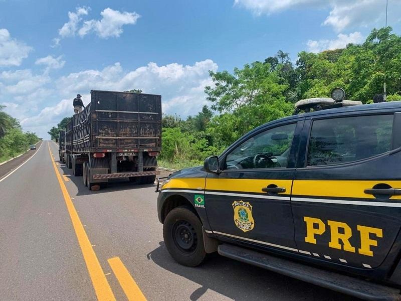 PRF apreende carga ilegal de madeira na BR-230 em São Bento do Tocantins