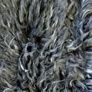 Suri Persian Long-Dk. Grey