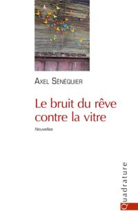 Le bruit du rêve contre la vitre – Axel Sénéquier