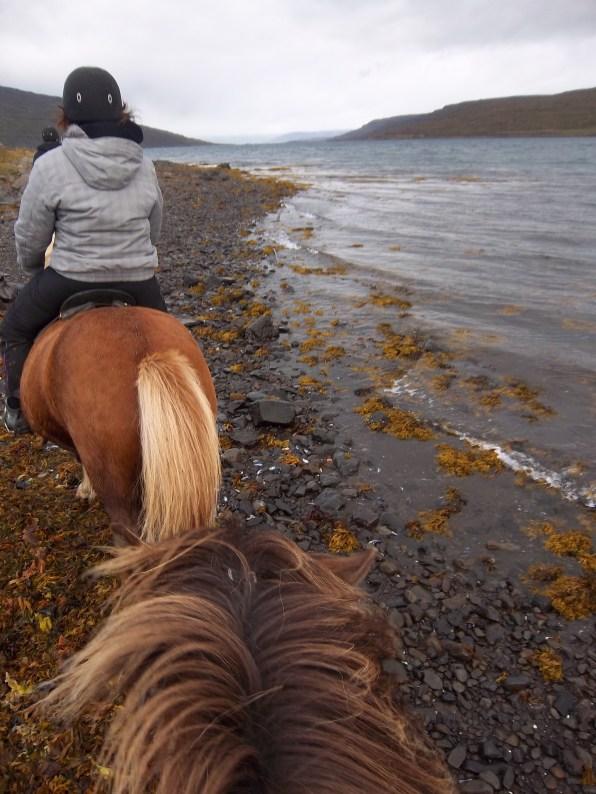A cheval dans le fjord, Heydalur, Islande, septembre 2012