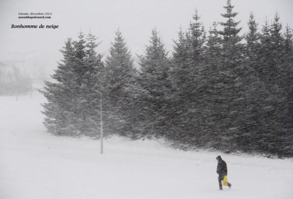 Encore une tempête de neige en Islande