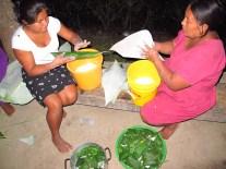 Toutes les femmes affairées à la préparation du cochon et des tamales