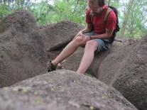 Bobo au milieu des pétroglyphes mayas, Nicaragua