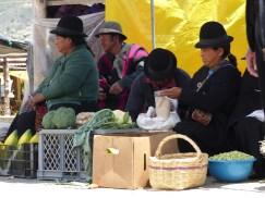Saraguros al mercado