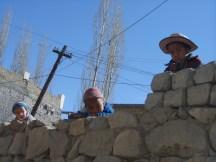Petits malicieux du Ladakh, une région rude et belle de l'extrême nord du pays